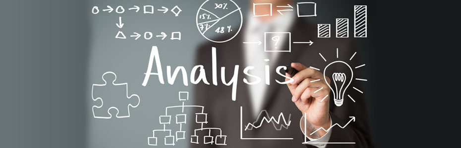 Analysis / Consulting